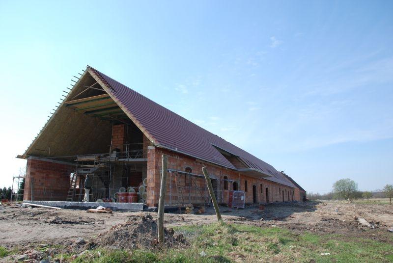 4-budowa-toee