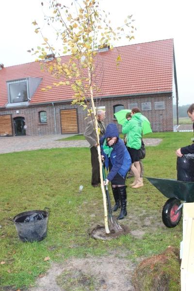 8-drzewa