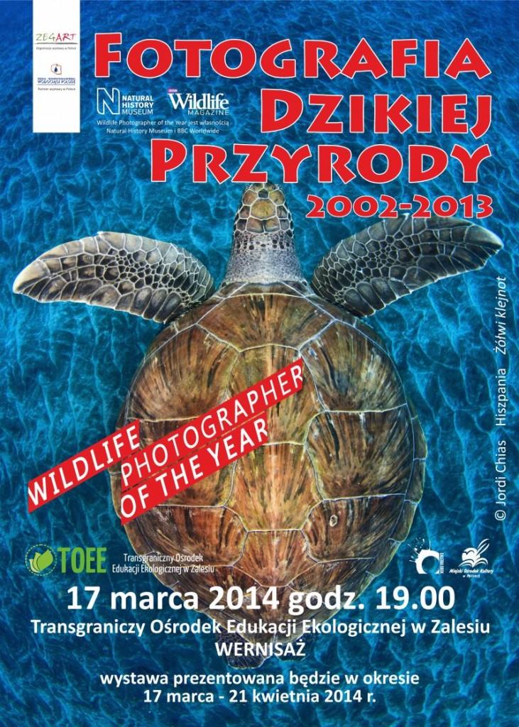 FOTOGRAFIA DZIKIEJ PLAKAT - www